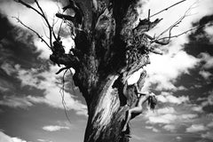 Half Angels Half Demons #12, Small Black and White Archival Pigment Print