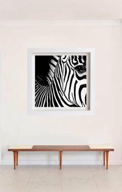 Half Angels Half Demons - Zebra #26, Large Black and White Photography Framed
