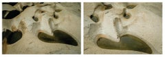 Untitled V and Untitled IV Diptych, Medium Archival Pigment Print