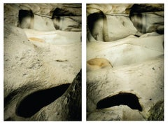 Untitled VIII and Untitled II Diptych, Large Archival Pigment Print
