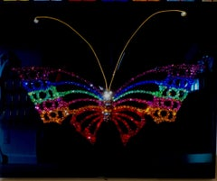 PRIDE BUTTERFLY (One of a Kind Swarovski Mixed Media Sculpture)
