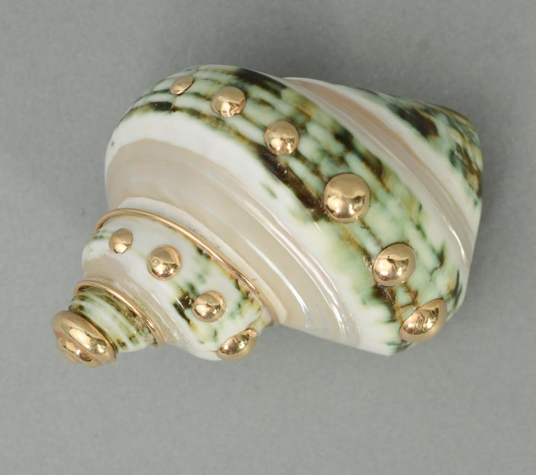 Beautiful natural shell brooch by Maz. The green has lovely shading from light to dark. Around the shell are gold dots topped with a gold shell shaped spiral. The brooch can be worn in several directions.
