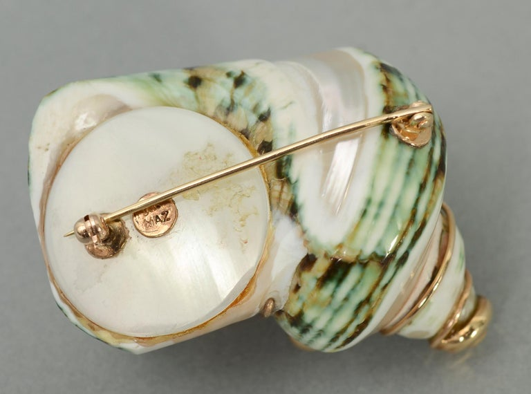 Maz Shell Brooch In Excellent Condition For Sale In Darnestown, MD