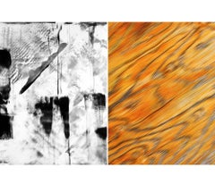 Untitled Diptych 2002 #1