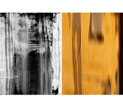 Untitled Diptych 2002 #3