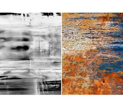 Untitled Diptych 2002 #5