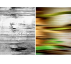 Untitled Diptych 2002 #7