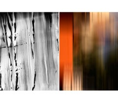Untitled Diptych 2007 #1