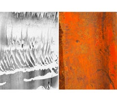 Untitled Diptych 2014 #3