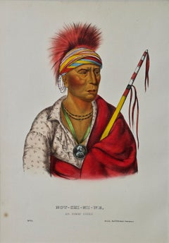 "Original Hand Colored McKenney & Hall Engraving ""Not-Chi-Mi-Ne, An Ioway Chief"""