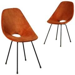 Medea Chairs Bentwood Velvet Foam Metal Rod, 1960s