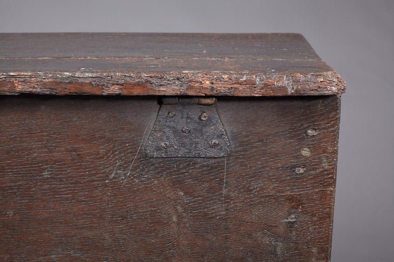 Medieval, Tudor Oak Boarded Chest, Henry VII / VIII, English, circa 1480-1530 For Sale 7