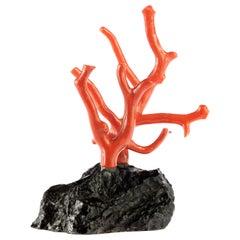 Mediterranean Precious Red Coral Natural Tree Branch Art Statue Sculpture