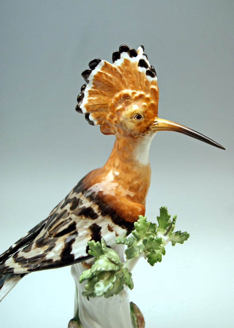 Meissen Animal Figurine Hoopoe Bird Model 278 Kaendler Made circa 1850 In Good Condition For Sale In Vienna, AT