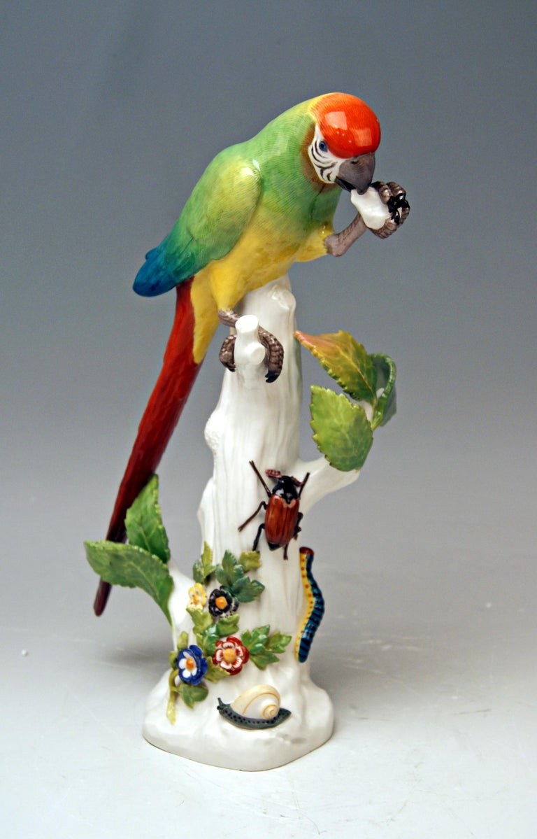 Hand-Painted Meissen Animal Figurine Parrot with Cockchafer Model 20 Kaendler Made 1860 For Sale