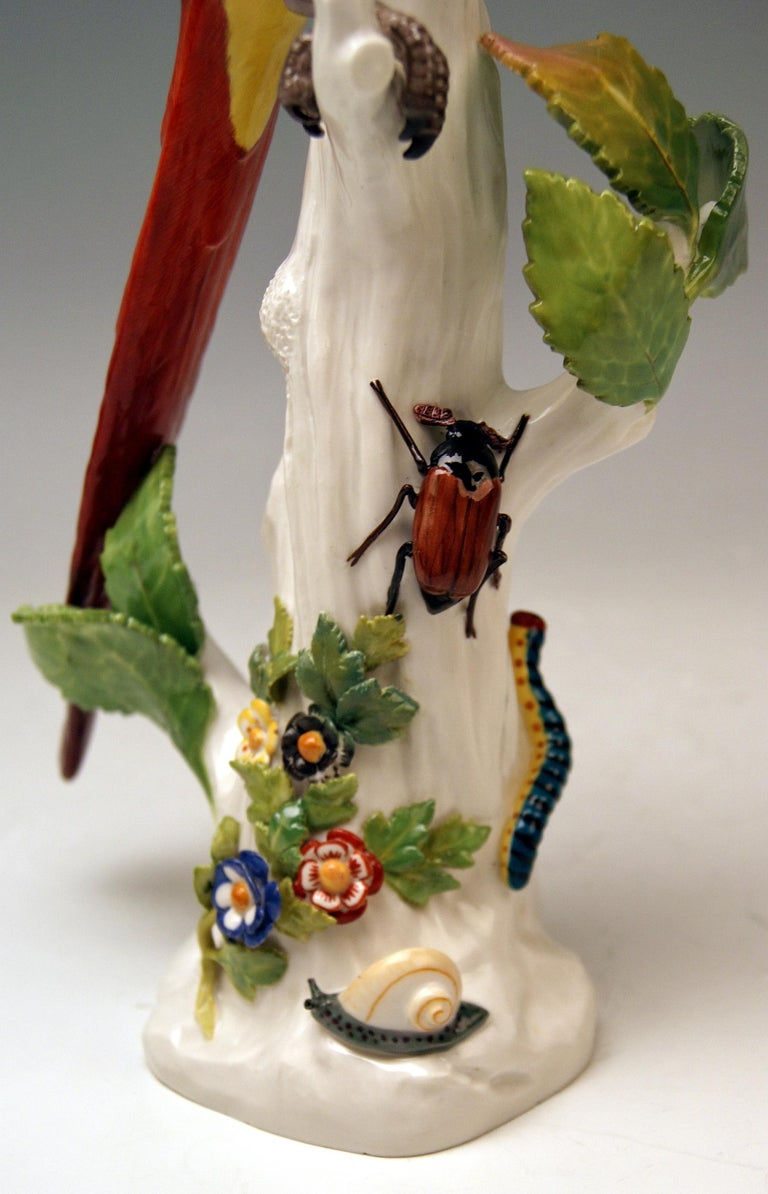 Mid-19th Century Meissen Animal Figurine Parrot with Cockchafer Model 20 Kaendler Made 1860 For Sale