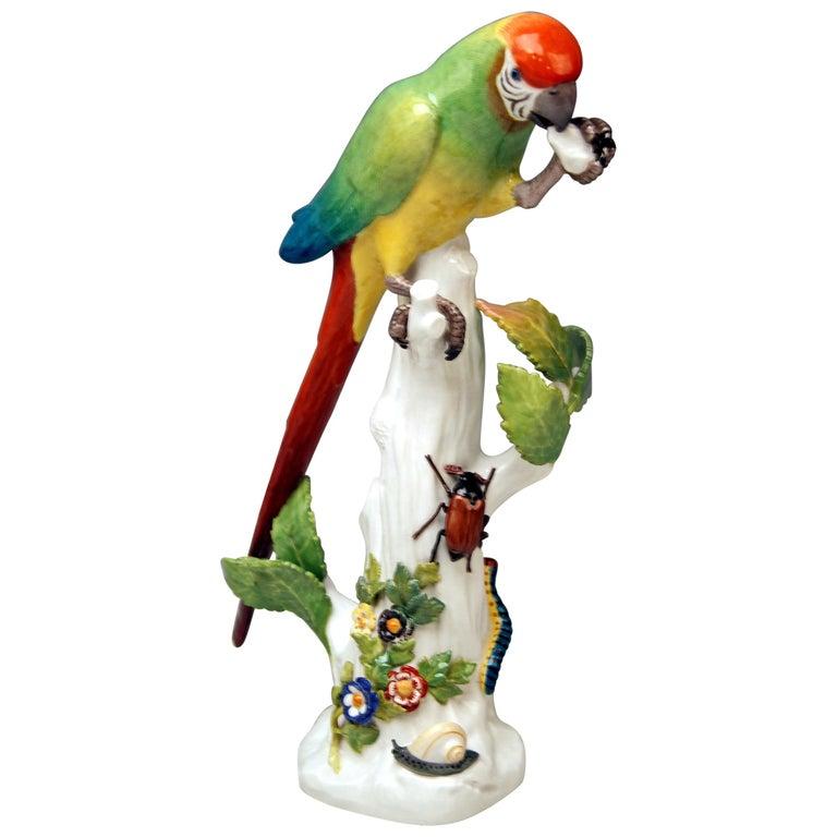 Meissen Animal Figurine Parrot with Cockchafer Model 20 Kaendler Made 1860 For Sale
