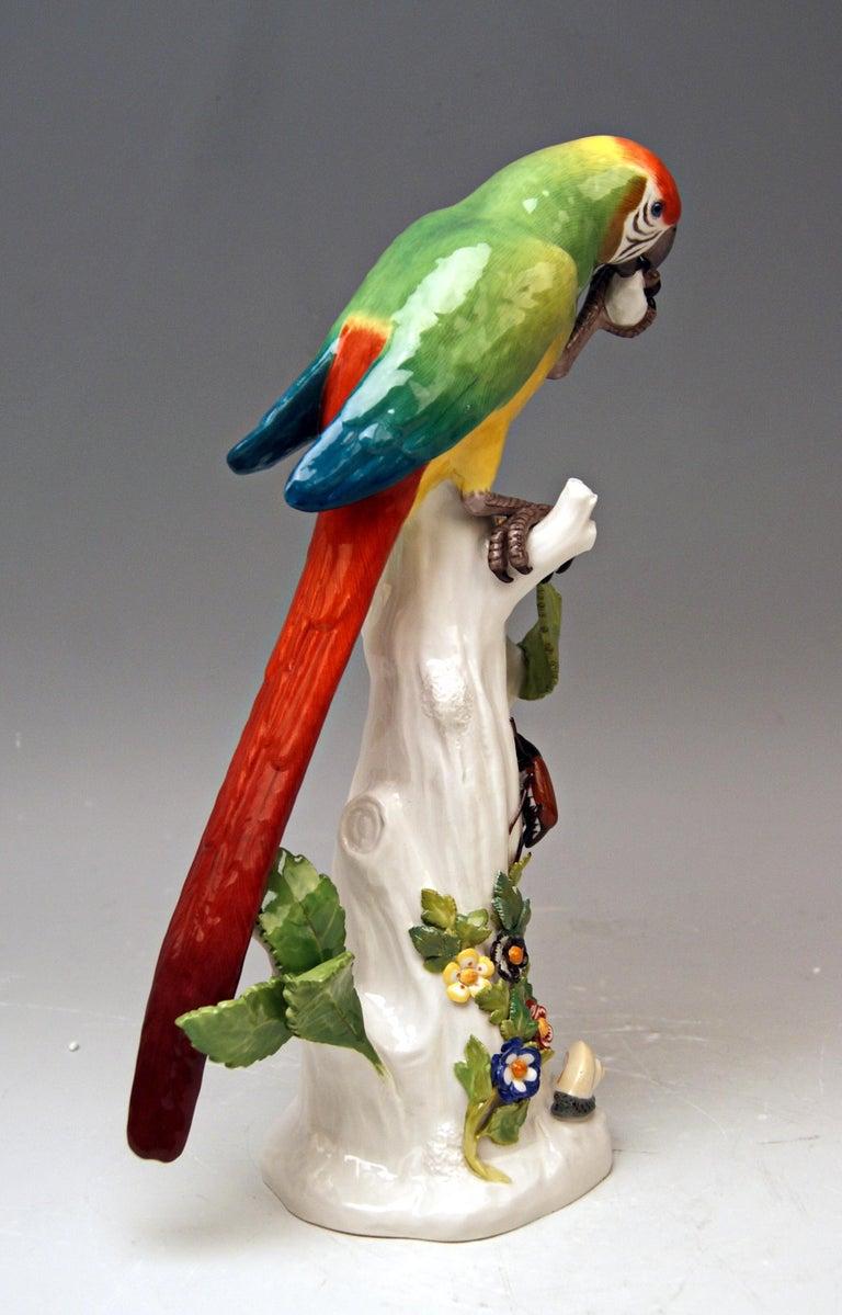 German Meissen Animal Figurine Parrot with Cockchafer Model 20 Kaendler Made 1860 For Sale