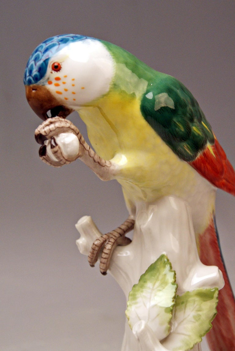 Hand-Painted Meissen Animal Figurine Parrot with Cockchafer Model 20x Kaendler made 1956 For Sale