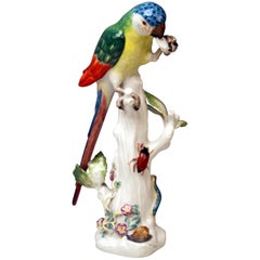 Meissen Animal Figurine Parrot with Cockchafer Model 20x Kaendler made 1956