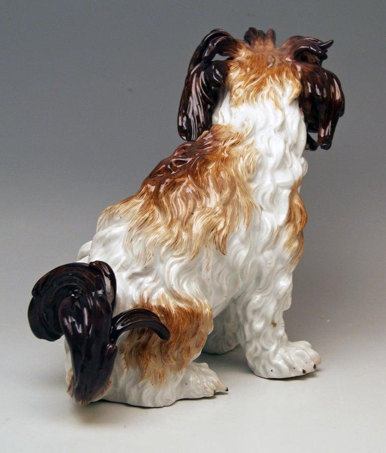 Rococo Meissen Bolognese Dog Model 2880 by Johann Joachim Kaendler Made circa 1870 For Sale