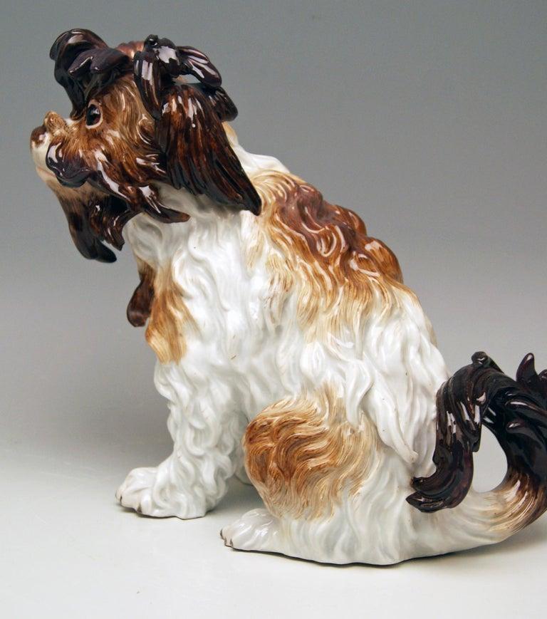 German Meissen Bolognese Dog Model 2880 by Johann Joachim Kaendler Made circa 1870 For Sale