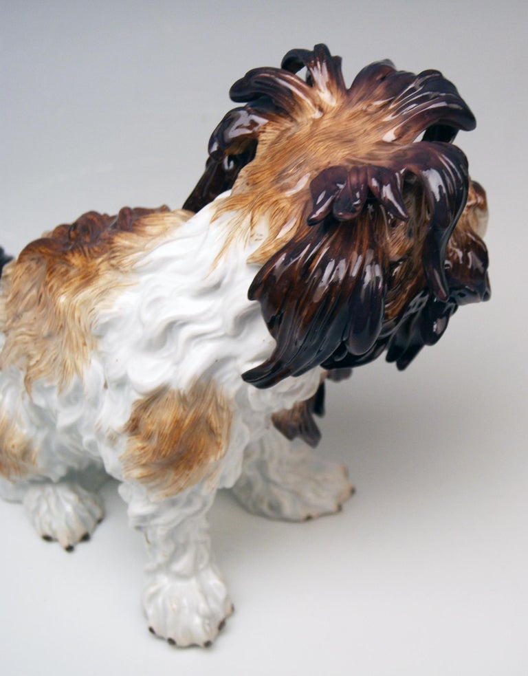 Meissen Bolognese Dog Model 2880 by Johann Joachim Kaendler Made circa 1870 In Good Condition For Sale In Vienna, AT