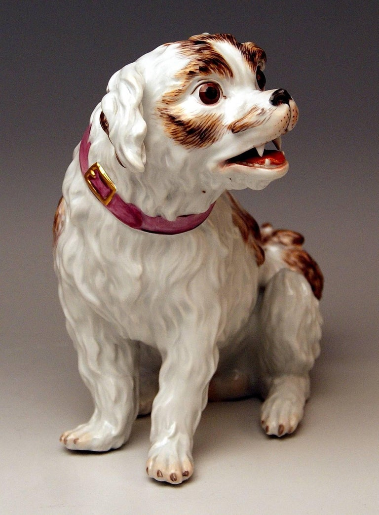 Meissen very lovely as well as gorgeous dog's figurine: So-said Spaniel dog, excellently manufactured.  Measures / dimensions: height 7.48 inches / 19.0 cm  width 9.055 inches / 23.0 cm  depth 4.33 inches / 11.0 cm   Manufactory: