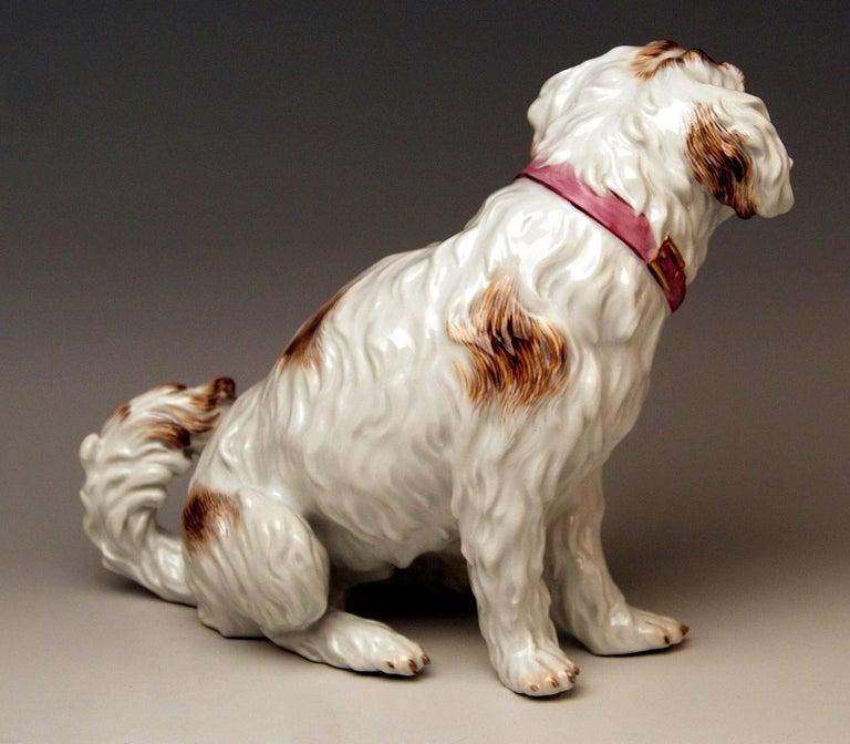 Rococo Meissen Dog Figurine Spaniel, Johann Joachim Kaendler Pfeiffer Period 1924-1934 For Sale