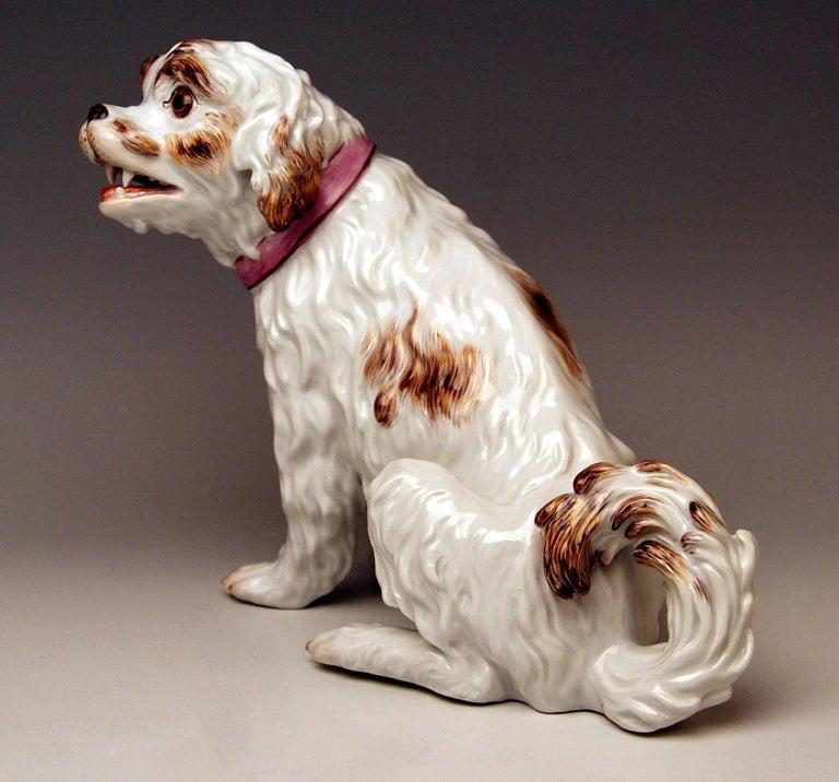 German Meissen Dog Figurine Spaniel, Johann Joachim Kaendler Pfeiffer Period 1924-1934 For Sale