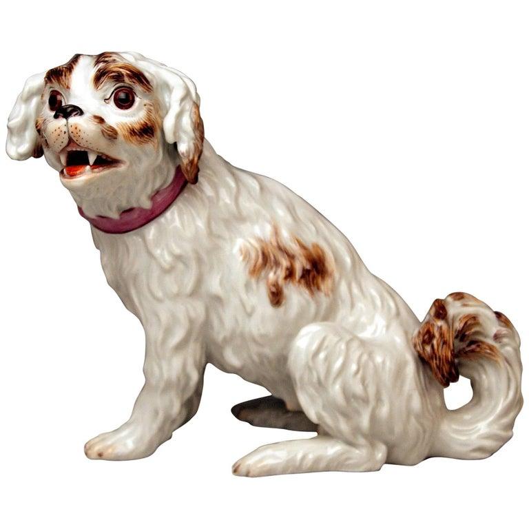 Meissen Dog Figurine Spaniel, Johann Joachim Kaendler Pfeiffer Period 1924-1934 For Sale
