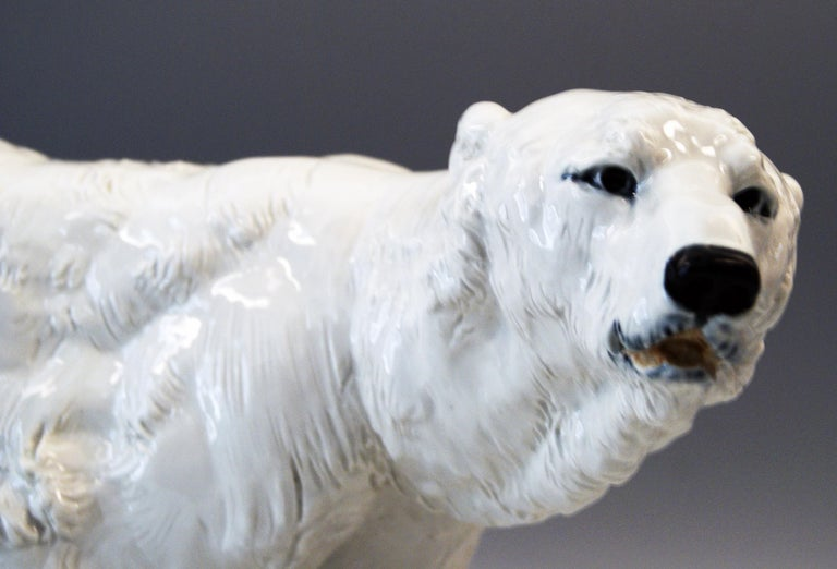 Meissen Ice Bear Animal Figurine Model T 181 Jarl Otto Made, circa 1935 In Excellent Condition For Sale In Vienna, AT