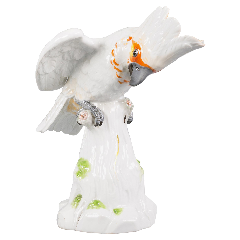Meissen Porcelain Cockatoo Bird, circa 1880