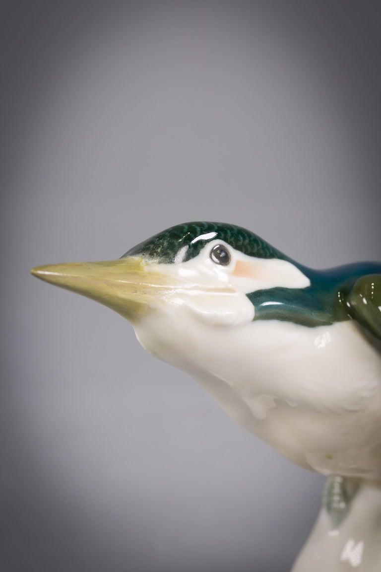 German Meissen Porcelain Kingfisher Bird, circa 1910 For Sale