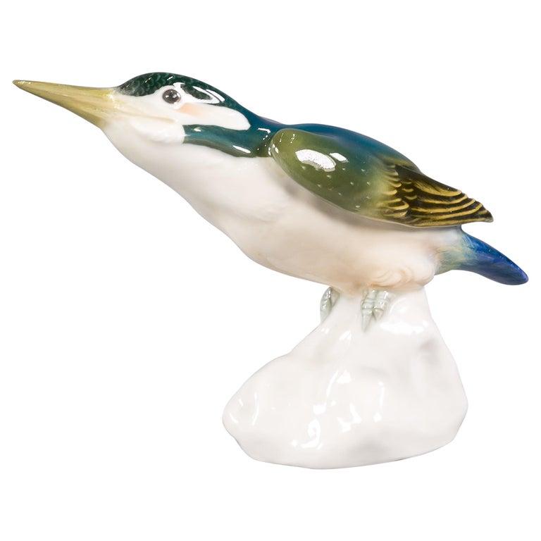 Meissen Porcelain Kingfisher Bird, circa 1910 For Sale