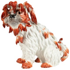 Meissen Porcelain Model of a Bolognese Dog