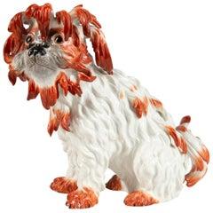 Meissen Porcelain Model of a Bolognese Dog