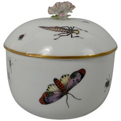 Meissen Porcelain Sucrier and Cover, Painted with Insects, circa 1740