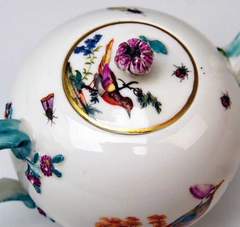 German Meissen Tea Pot Rococo Period Birds Paintings Höroldt Era, 1763-1774 For Sale