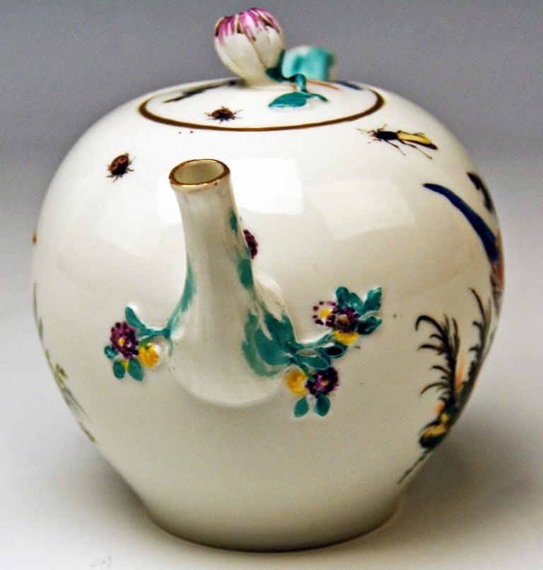 Meissen Tea Pot Rococo Period Birds Paintings Höroldt Era, 1763-1774 In Good Condition For Sale In Vienna, AT
