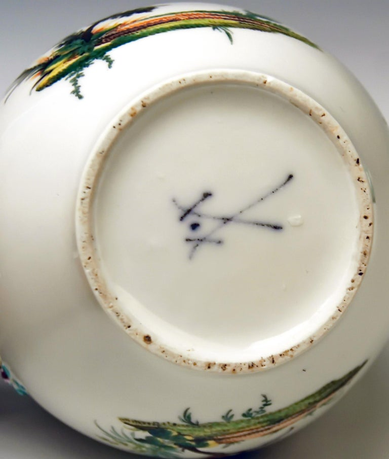 18th Century Meissen Tea Pot Rococo Period Birds Paintings Höroldt Era, 1763-1774 For Sale