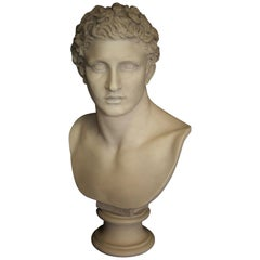 Meleager Marble Bust, 20th Century