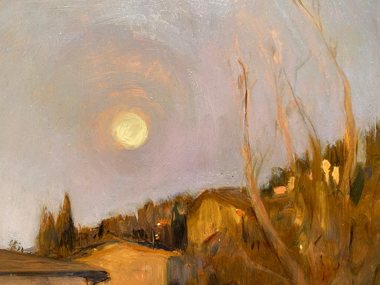 Corona Moonrise For Sale 3