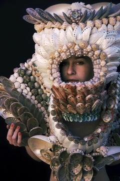 Sea Shells - Skins Series