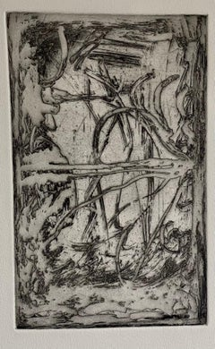 American Abstract Expressionist Artist Melissa Meyer Aquatint Etching
