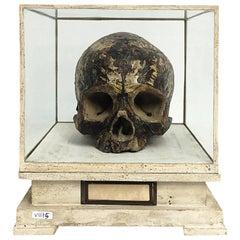 Memento Mori Plaster Sculpture, Italy, circa 1800