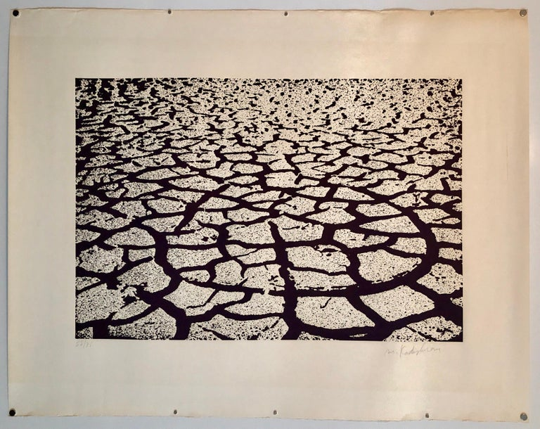 Israeli Modern Pop Art Aquatint Etching Cracked Earth Art Kadishman Lithograph - Print by Menashe Kadishman