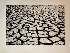 Israeli Modern Pop Art Aquatint Etching Cracked Earth Art Kadishman Lithograph