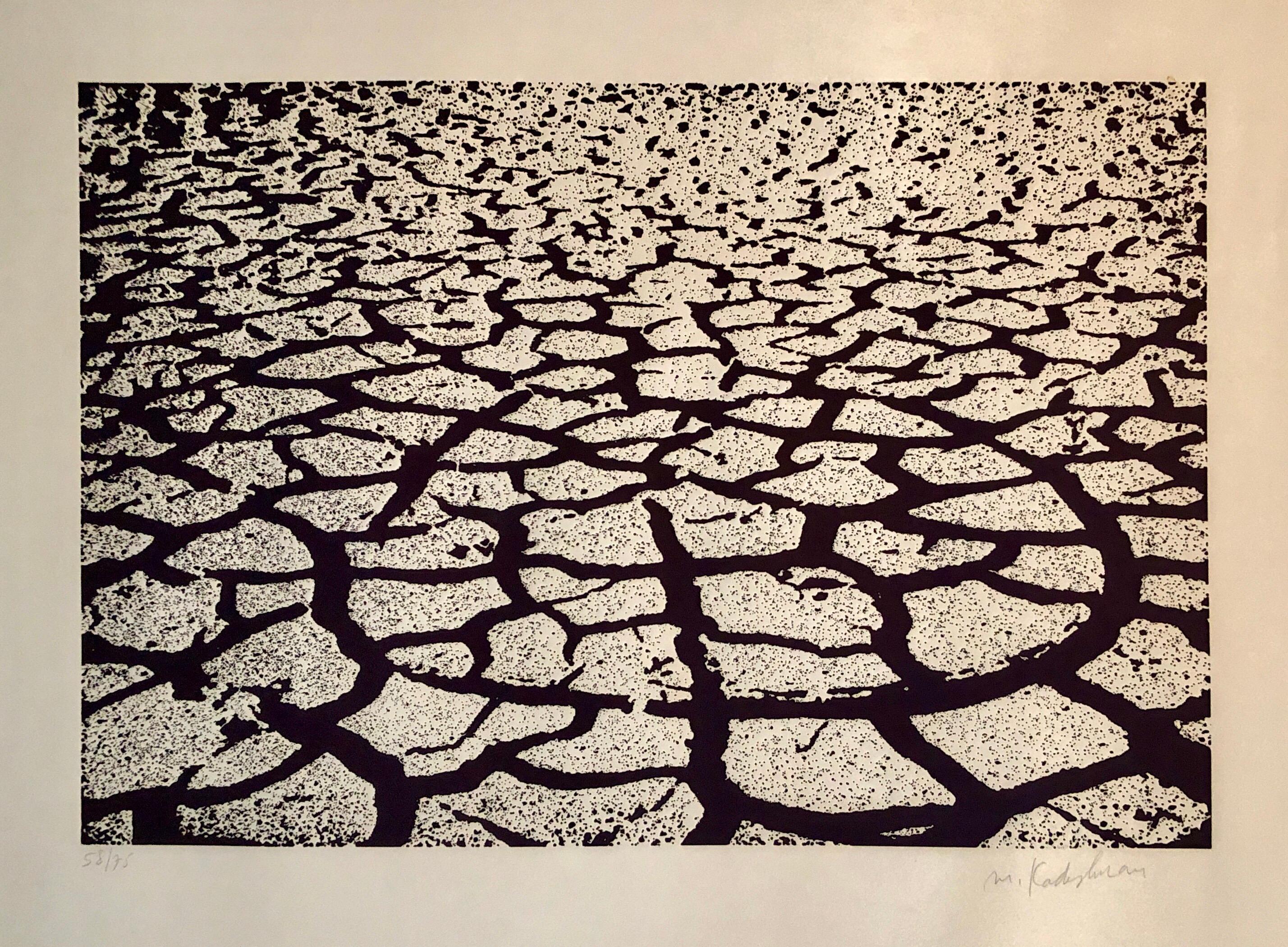 Israeli Modern Pop Art Aquatint Etching Cracked Earth Art Kadishman Lithograph