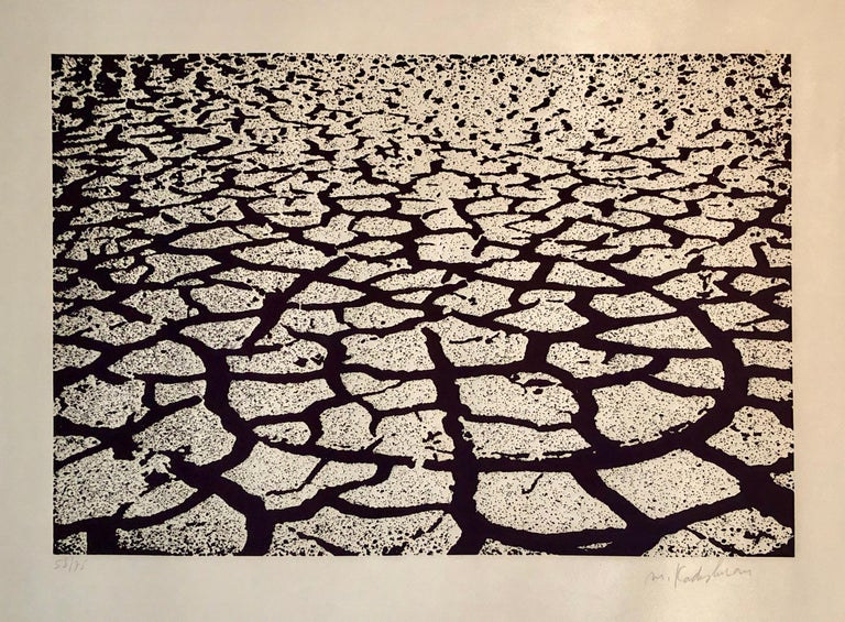 Menashe Kadishman Abstract Print - Israeli Modern Pop Art Aquatint Etching Cracked Earth Art Kadishman Lithograph